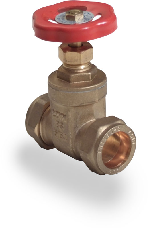 BS Gate Valves